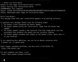 Docker Run Hello World
