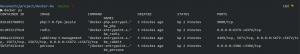 Docker Compose Already Run